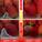 イチゴ4分割2.png